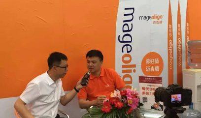 """""""迈吉糖""""精彩亮相第十五届(2017)中国畜牧业博览会"""