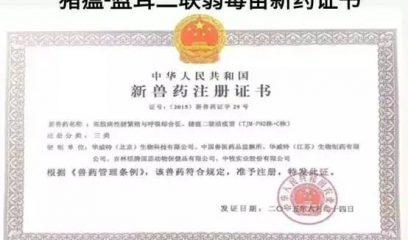 华温蓝:猪瘟-蓝耳同步预防的创举